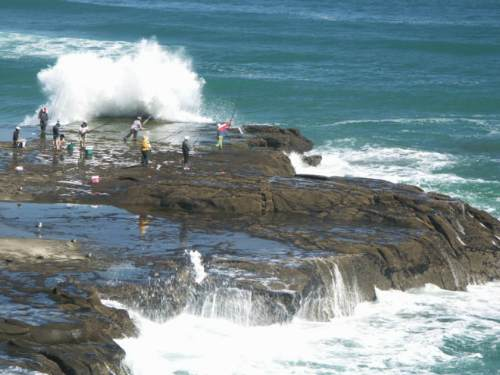 Muriwai Extreme Fishing