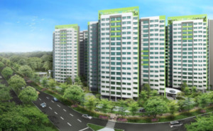 HDB BTO: Punggol Emerald and Punggol Waves