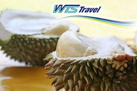 $51 for Durian Trip at Desaru w/ Return Coach